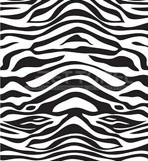 Dušikardin 180x200 cm Zebra ettorel.ee